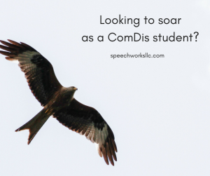 Soar As A Student
